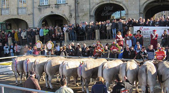 Parade des bœufs gras 2020 à Bazas