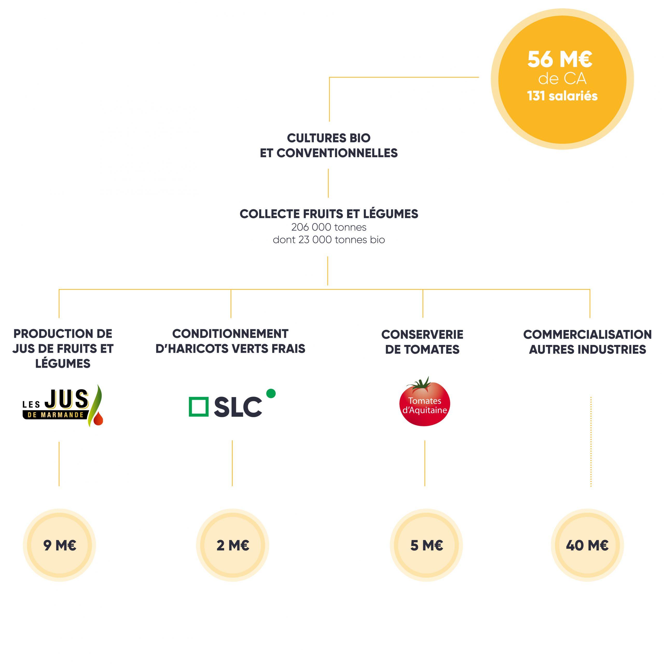 Schéma branche fruits et légumes groupe terres du sud 2019 2020