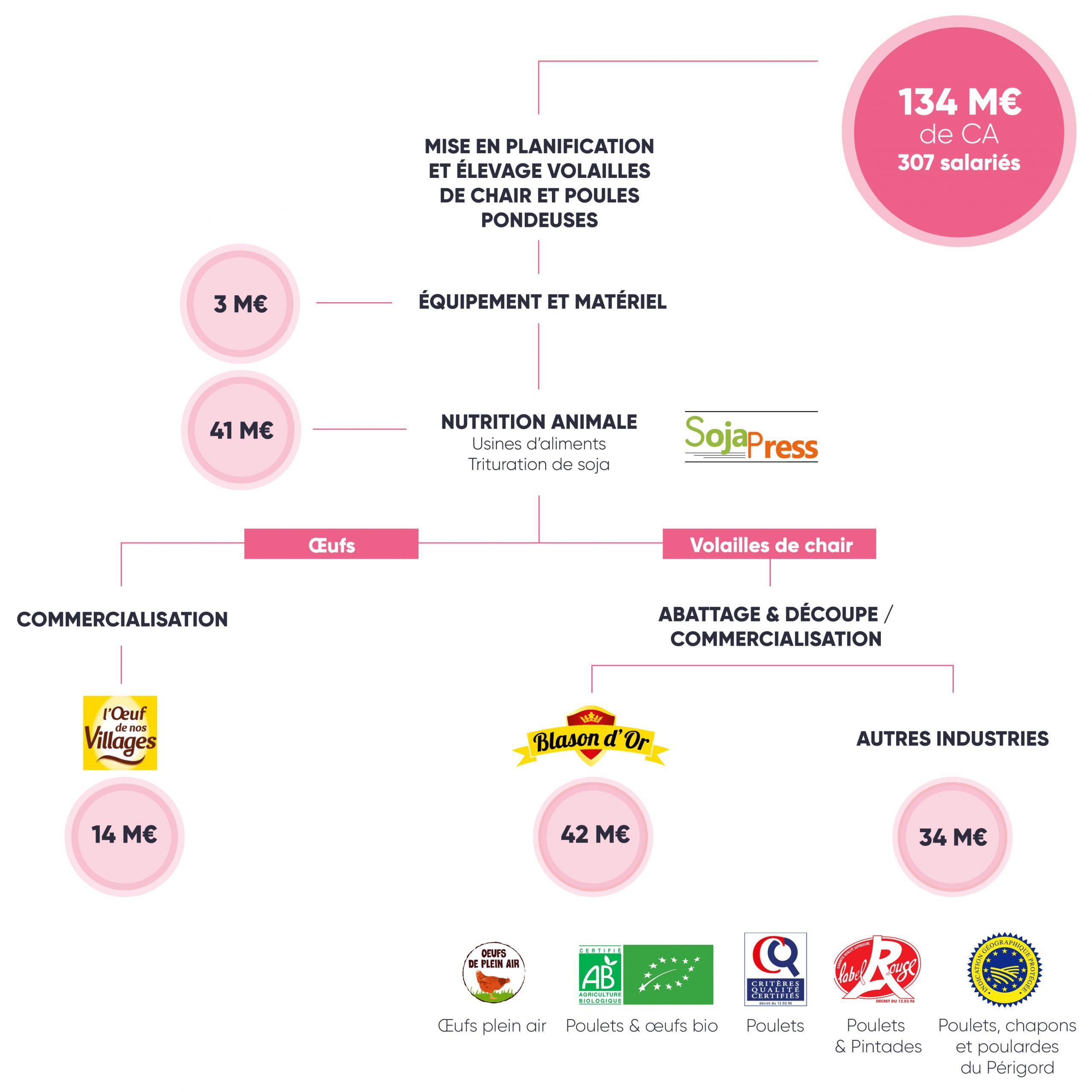 Schéma branche Volailles groupe terres du sud 2019 2020