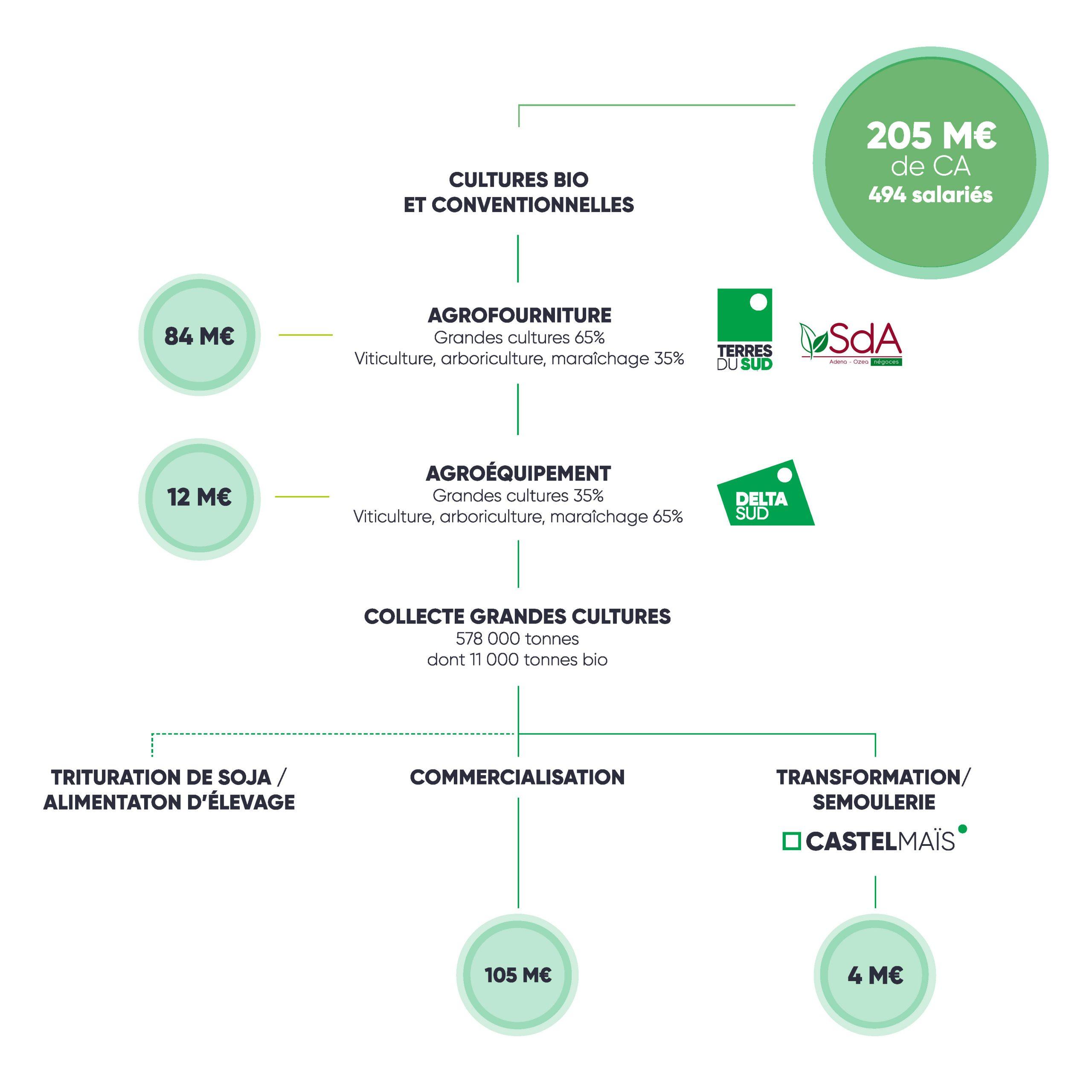 Schéma branche Végétale du groupe Terres du Sud, 2019 2020