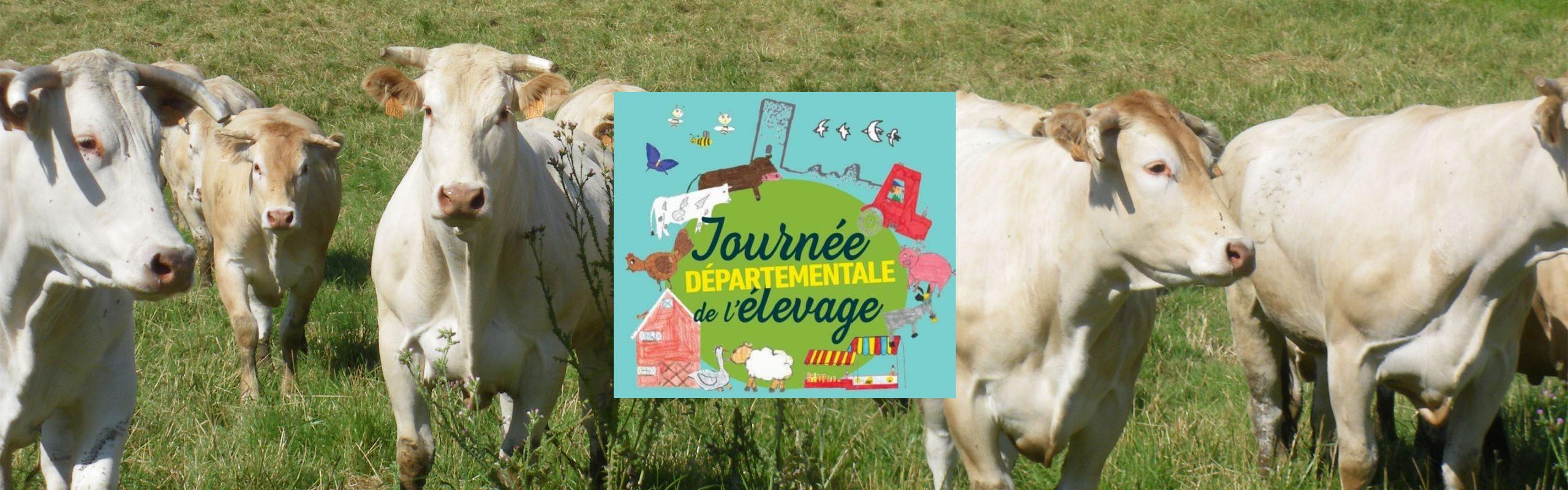 Journée de l'élevage à Gavaudun en lot-et-garonne avec le groupe Terres du Sud