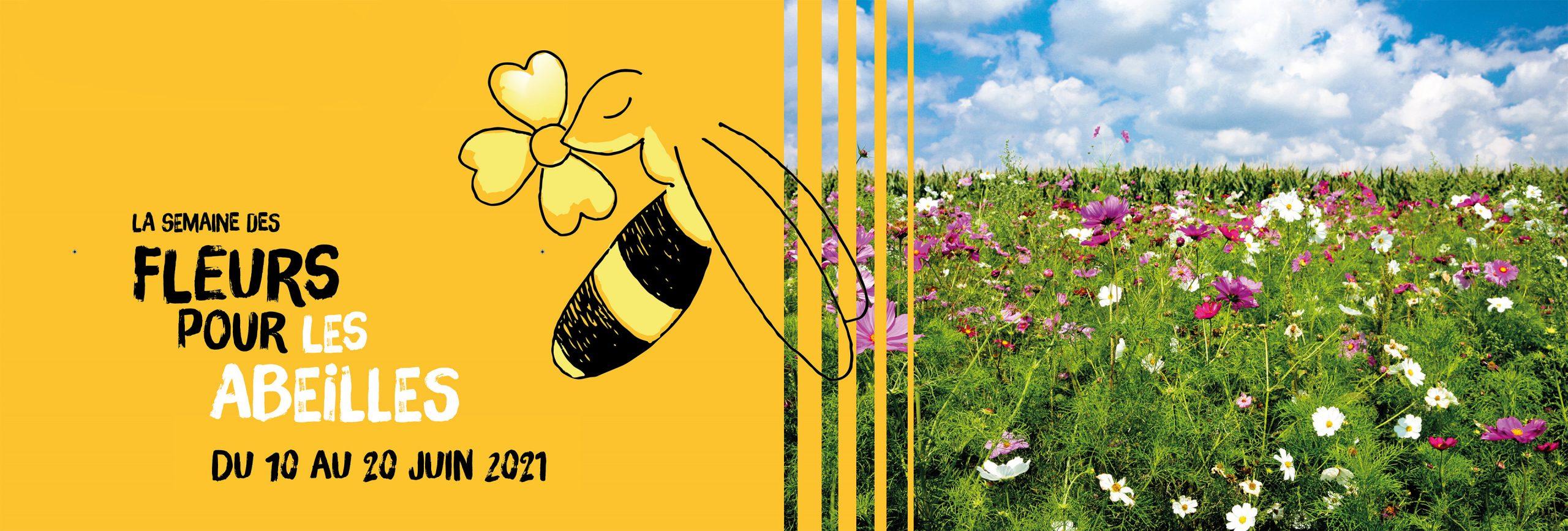 Semaine des fleurs pour les abeilles, groupe terres du sud